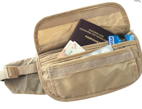 TravelSafe Skin Waist Pouch